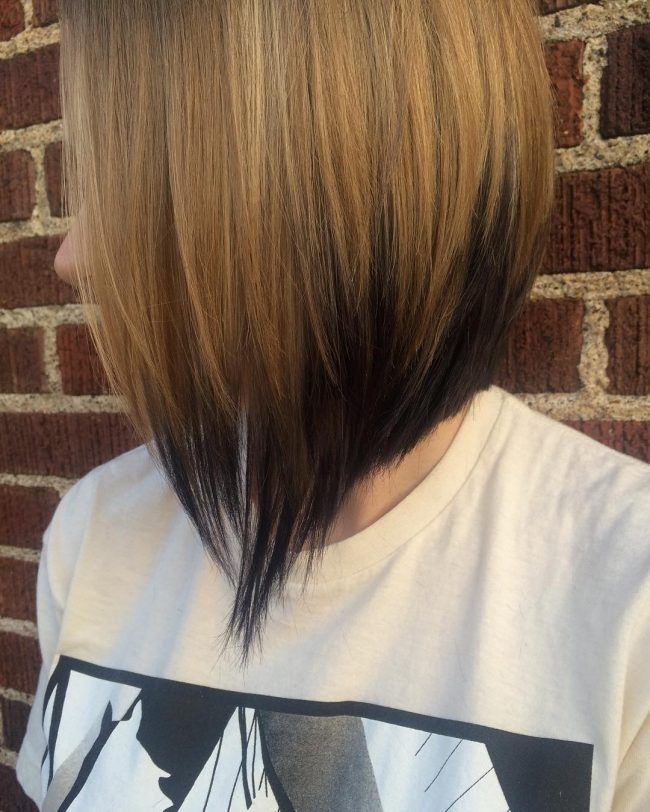 Blonde to Black Ombre Bob